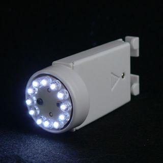 Lanternlight